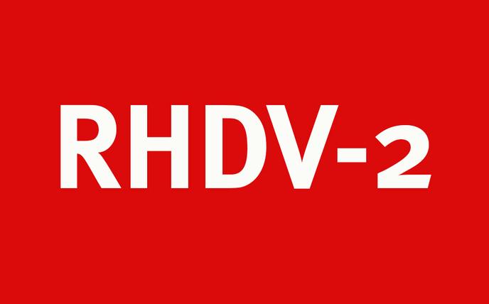 RHDV-2